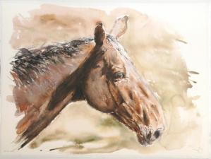2010-11-06-chevaux-d-olivia - 56x76 .jpg